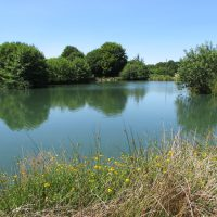 L'Angottiere carp fishery offering exclusive carp fishing in france