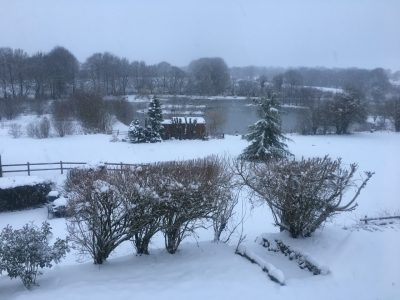 winter 2019 at L'angottiere carp fishery