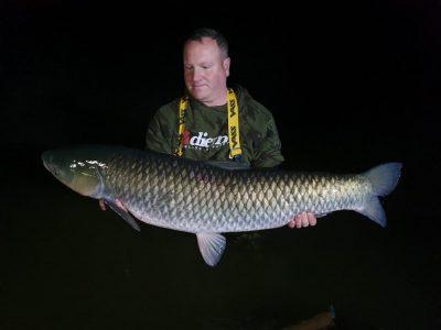 carp capture at l'angottiere carp fishery