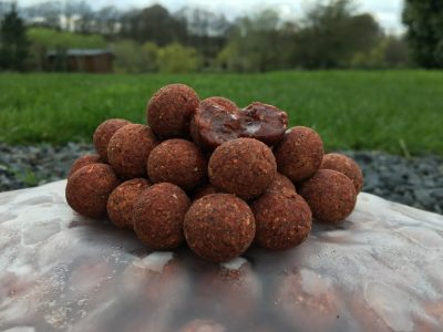 Spicy crab boilies at L'Angottiere carp fishery