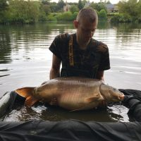 carp capture for gallery at L'Angottiere carp fishery with carp fishing in france