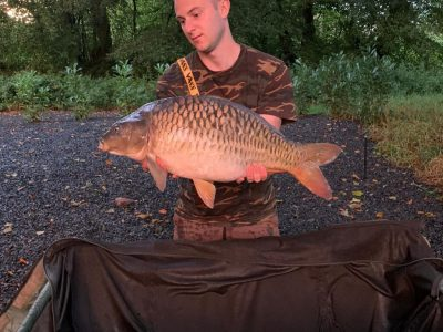 carp capture for gallery at L'Angottiere carp fishery in Normandy, france